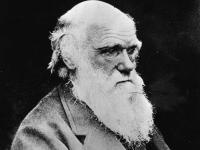 Charles Darwin, el genio emprendedor que quería ser pastor